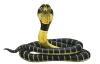 Anlili - Reptilzer criador de reptiles