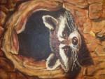Rata Mistral - Macho (3 meses)